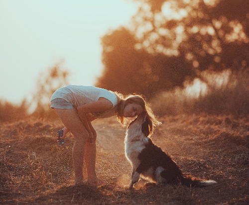 how-to-be-better-owner-from-dogs-point-of-view-body1