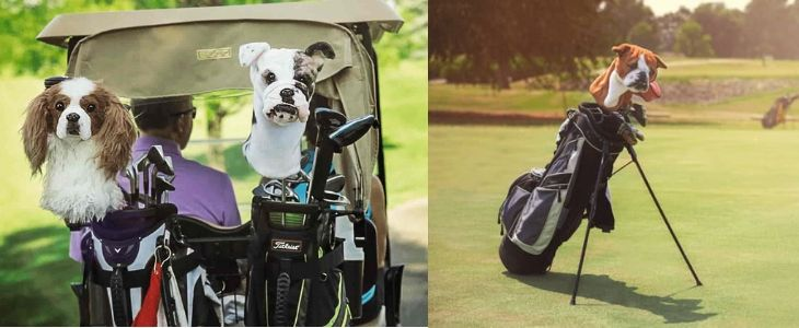 split screen image - left half features golf bags in back of golf cart with dog shaped golf club covers, right side features a golf bag on a putting green with a dog club head cover