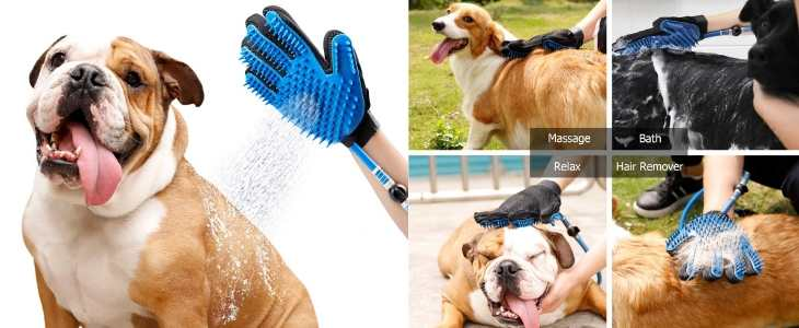 multipanel image demonstrating the dog shower sprayer