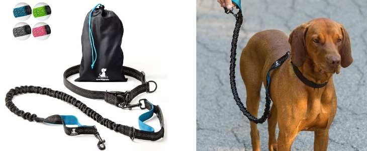split screen image on the left is a product photo of the hands-free runner leash and the right side shows a dog wearing the leash