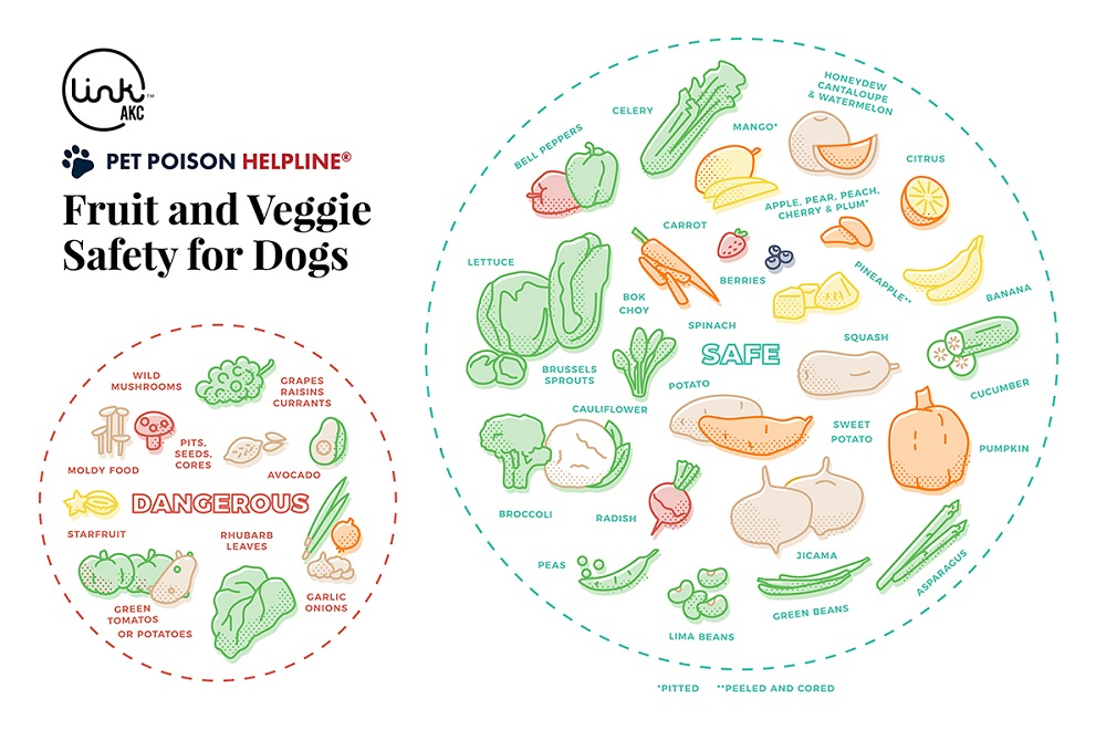 guide-to-safe-and-unsafe-fruits-and-vegetables-for-dogs-pph