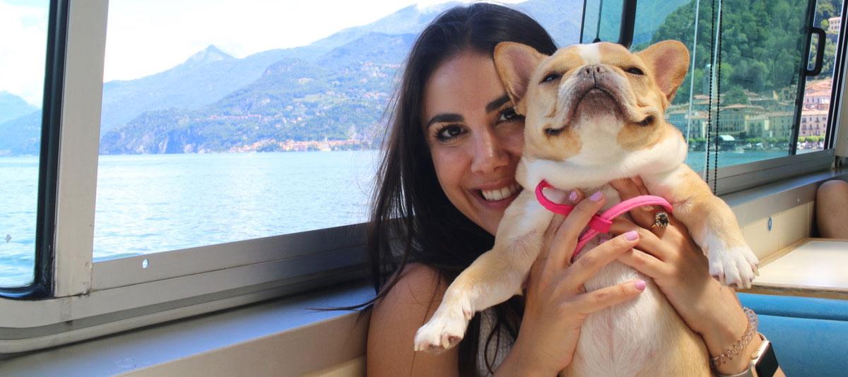 dog-agency-pet-celebrities-hero