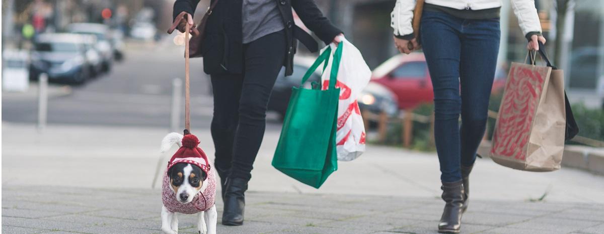 dog-shopping-for-holidays-hero