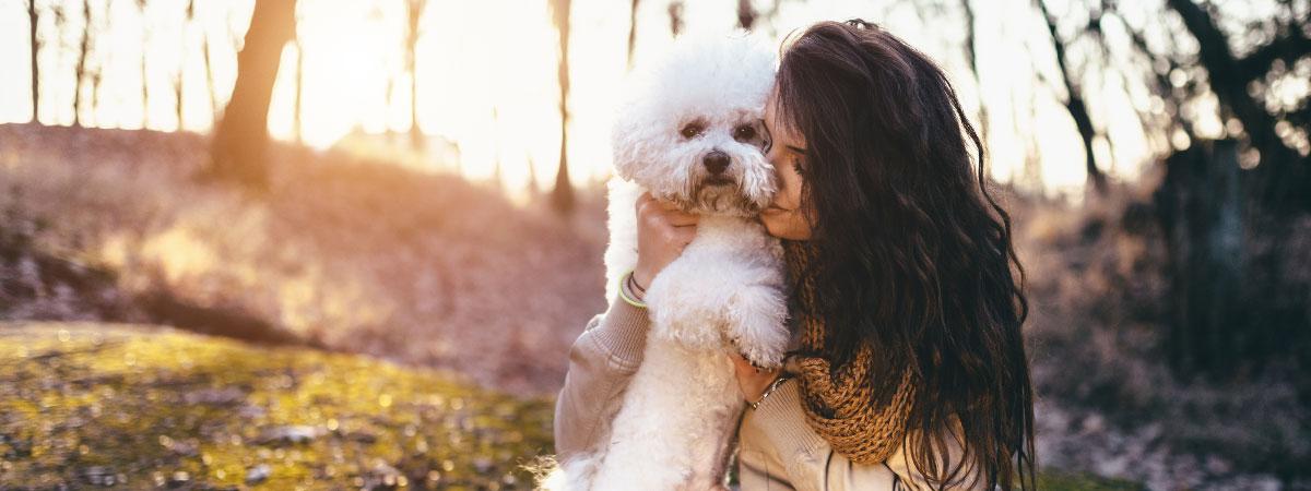 emotional-support-dog-hero