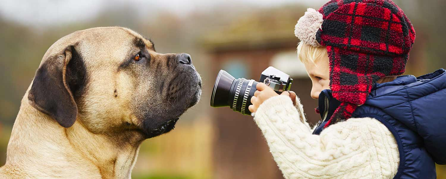 How to Take the Perfect Pet Photo