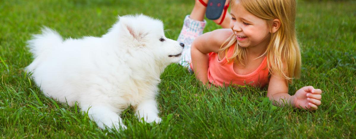 kid-dog-activities-hero