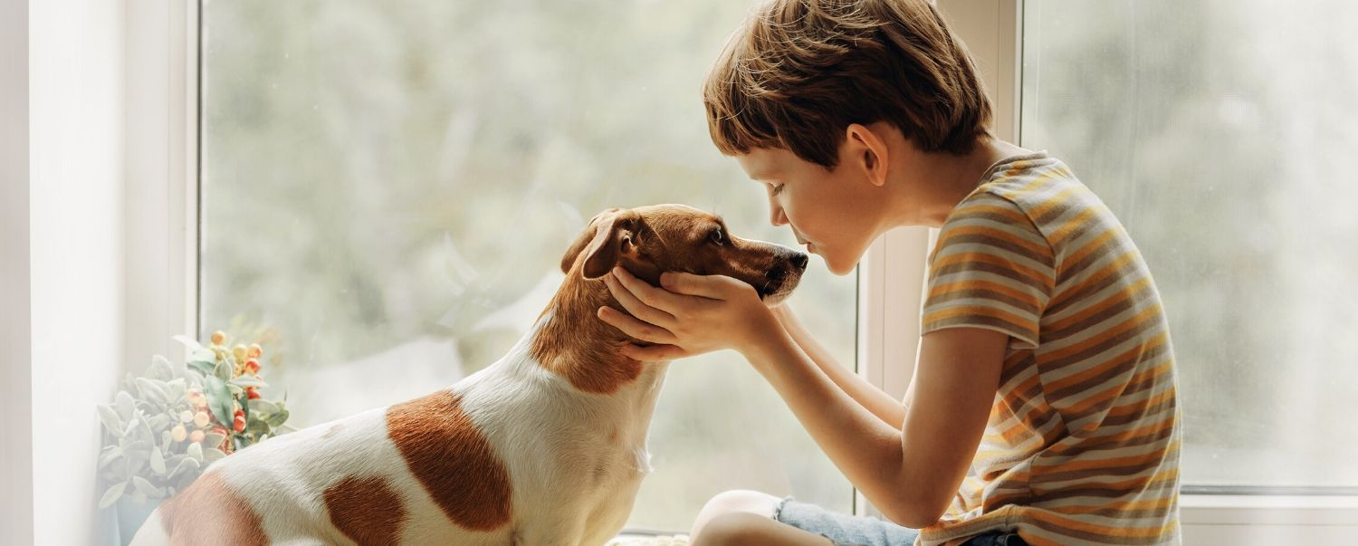 Why More People Are Adopting Pets During the Coronavirus Pandemic