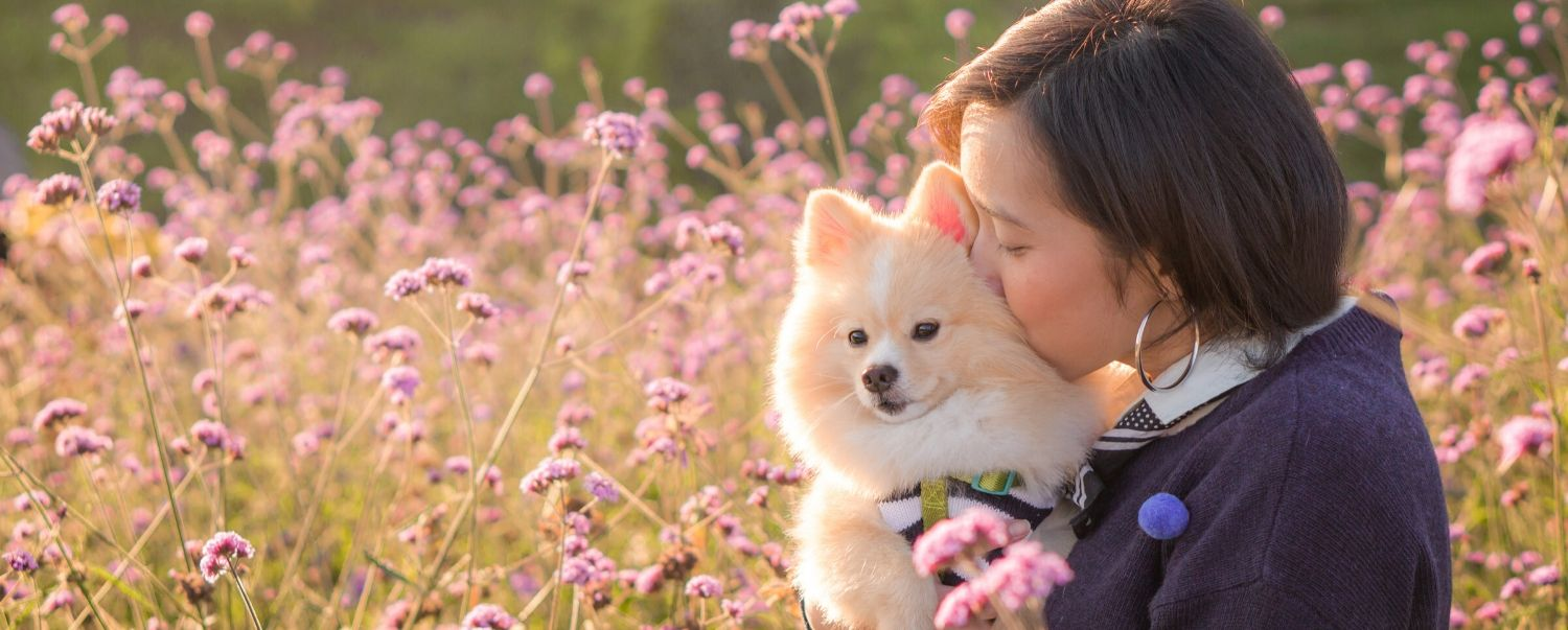 Top 10 Mother's Day Gifts for Dog Moms